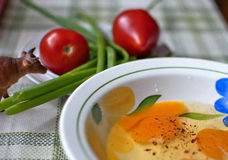 Eggs. tomatoes, green onions and omelet Stock Images