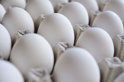 Eggs Tray. Eggs in the paper Tray stock photo