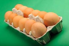 Eggs in Tray. One Dozen Fresh Eggs in tray stock image
