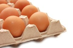 Eggs in tray Stock Images
