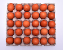 Eggs in tray Royalty Free Stock Photography