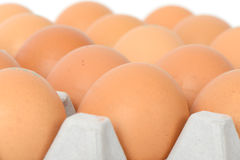 Eggs on tray. Closeup of eggs on tray, isolated on white Royalty Free Stock Photo