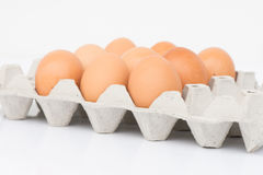 Eggs in the tray with isolate background. Eggs in the tray with studio light Stock Photography