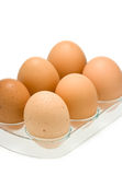 Eggs in tray isolated on white Stock Photos