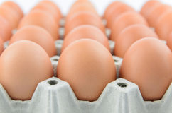 Eggs on tray Royalty Free Stock Photography