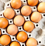 Eggs on tray Royalty Free Stock Photo