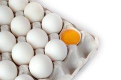 Eggs in tray Royalty Free Stock Photos