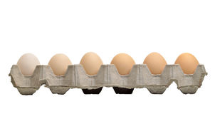 Eggs tray on white isolation Stock Photography