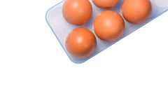 Eggs in trayisolated. Eggs in tray material for cooking white background Stock Photos