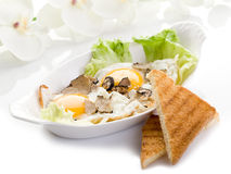 Eggs with truffle royalty free stock photography