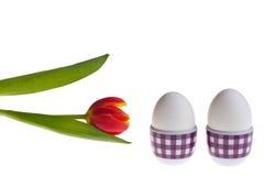 Eggs and tulip Stock Photo