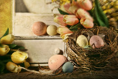 Eggs and tulips with nostalgic feeling for Easter Royalty Free Stock Images
