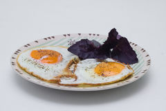 Eggs from two eggs with basil Stock Image