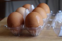 Eggs are used for cooking. royalty free stock images