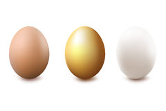 Eggs. Vector Stock Images