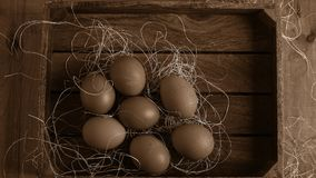 Eggs in the village on the table. The farm`s products. Fresh foo stock photo