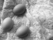 Eggs vintage black and white. Eggs rustic black and white Stock Photo