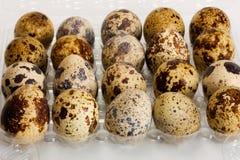 Eggs Wachteln Lizenzfreie Stockfotos