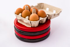 Eggs and Weight Plates. Studio shot of six eggs on top of four weight plates. Symbol of fitness and nutrition Stock Images
