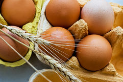 Eggs and wheat Royalty Free Stock Photo