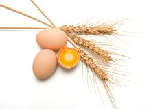 Eggs and wheat ear Royalty Free Stock Photo