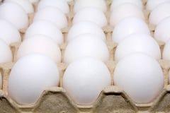 Eggs white Stock Photos
