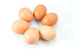 Eggs. The eggs isolated on white background Royalty Free Stock Photo
