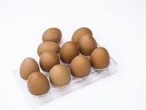 Eggs. On a white background Stock Photos