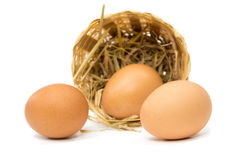 Eggs on a white background Stock Image