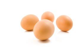 Eggs on white background royalty free stock photo
