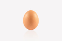 Eggs on white background Royalty Free Stock Photo