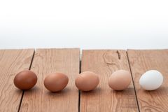 Eggs and white background on wood table royalty free stock photo