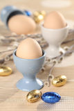 Eggs in white and blue eggcups. With catkins and little chocolate eggs in foil Royalty Free Stock Photography