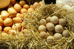 Eggs white and brown Royalty Free Stock Images