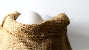 Eggs stock footage