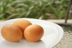 Eggs on a white dish at the market Royalty Free Stock Photos