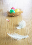 Eggs and white feather Royalty Free Stock Photos