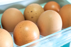 Eggs on a white shelf Royalty Free Stock Photography