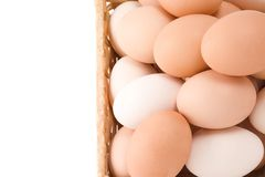 Eggs in wicker basket Royalty Free Stock Photo
