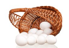 Eggs in wicker basket Stock Photography