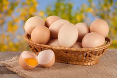 Eggs in a wicker basket on a wooden board with blurred garden background.  stock photo