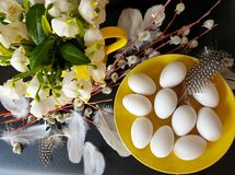 Free Eggs With Willow Tree And  White Spring Flower Bouquet  Still Life Green Yellow Red Feathers Down Decoration Easter Yellow Cu Royalty Free Stock Image - 143784656