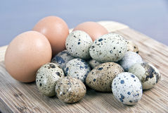 Eggs on wood. Hen, partridge and quail eggs on wood and blue background Stock Photo