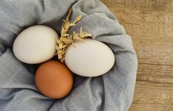 Eggs on wood food straw chicken stock photos