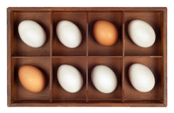 Eggs in wooden box Royalty Free Stock Images
