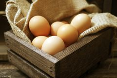 Eggs in Wooden Crate. Organic Cage-Free Chicken Eggs in Wooden Crate with Canvas Royalty Free Stock Photos
