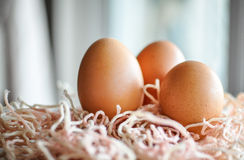 Eggs on a wooden table Stock Image