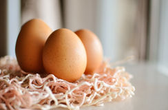 Eggs on a wooden table Royalty Free Stock Photo
