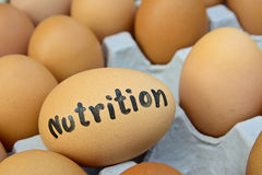 Eggs with  word nutrition  on egg crate for food concept Stock Photo