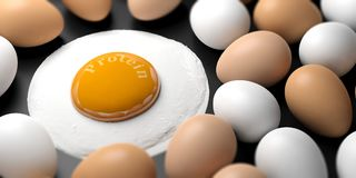 Protein written on a fried egg`s yolk. 3d illustration. Eggs and word protein written on a fried egg`s yolk. 3d illustration Royalty Free Stock Photos